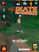 Screenshot of Skate Madness