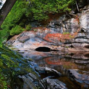 Hidden cave  by Dejan Gavrilovic - Landscapes Prairies, Meadows & Fields ( cave ny photodejan )