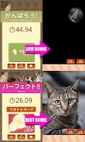 Screenshot of ねこタッチ25