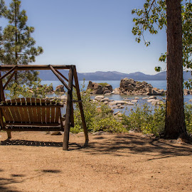 Wooden Swing by the Lake by Trevor Fairbank - Landscapes Travel ( wooden, landscape photography, pine trees, landscape, swing, lake tahoe )