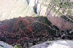 Grand Canyon 044.jpg