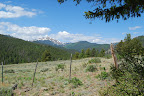 Alder Creek 002.jpg