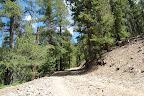 Alder Creek 008.jpg