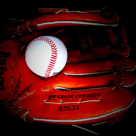 Playtime ! by Janine Kain - Sports & Fitness Baseball ( mitt, baseball, sport, wilson, game )