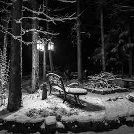 Snowy night  by Richard Wright - Landscapes Weather ( nikon night snow mississippi )