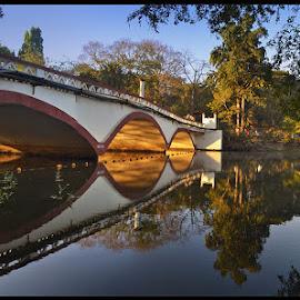 bridge by Yogesh Waikul - City,  Street & Park  City Parks