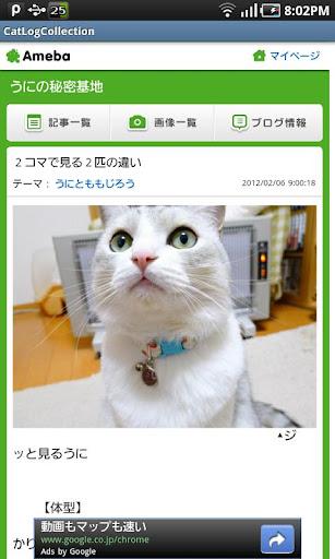 猫ブログ・コレクション