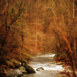 Winter stream by Lowell Griffith - Landscapes Waterscapes