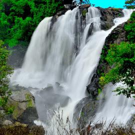 Waterfall by Bhaskar Trivedi - Landscapes Waterscapes ( water, mountain, waterfall, forest, landscape )