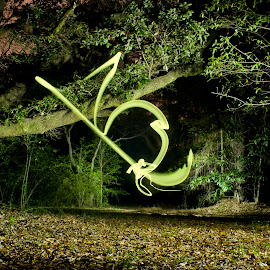 Firefly by Barry Blaisdell - Abstract Light Painting ( light painting, tree, night, glowing, woods )