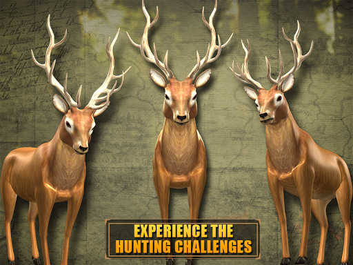 Deer Hunting - Sniper Shooting For PC