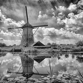 Dutch Windmills by Colin Dixon - Black & White Landscapes ( water, kinderdyk, holland, reflections, windmills )