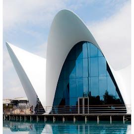 OCEANOGRAPHIC by David Rodriguez - Buildings & Architecture Architectural Detail ( water, building, architecture, bridge, valencia )