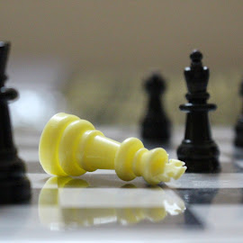 Abstract Chess by Abhishek Kumar - Novices Only Abstract ( abstract, chess, abhishek, piece, akcl )