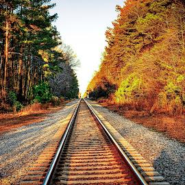 Northbound CSX by Lou Plummer - Transportation Railway Tracks