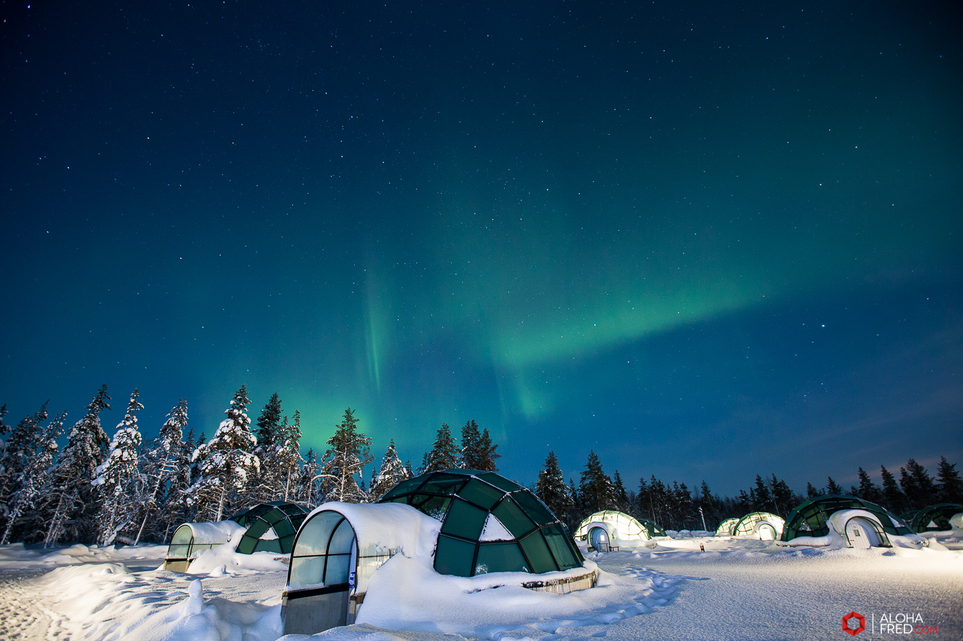 0008 - alohafred Laponie - _5E_9698