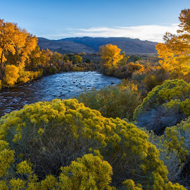 Autumn Star by Mike Lindberg - Landscapes Mountains & Hills ( truckee river, sierra nevada, fall colors, reno, autumn, reno nevada, nevada, eastern sierra, sunstar, yellow, great basin )
