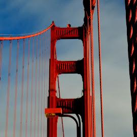Golden Gate Suspension by Brian Blood - Buildings & Architecture Architectural Detail ( cables, bridge, golden gate, san francisco, vertical lines, pwc )