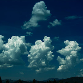 SUMMER  by Sam Okamoto - Landscapes Cloud Formations ( blue sky, clouds formation, northern california, truckee, summer, lake tahoe )