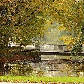Neuss by Daniel Chobanov - City,  Street & Park  City Parks ( park, fresh, lake, neuss, germany, morning, city )