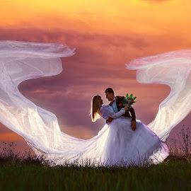bride + groom by Dejan Nikolic Fotograf Krusevac - Wedding Bride & Groom ( wedding photography, aleksandrovac, kraljevo, vencanje, novi sad, jagodina, krusevac, svadba, sarajevo, subotica )