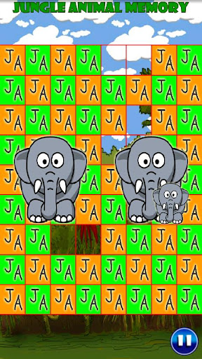 Jungle Animal Memory Enhanced