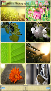 Macro Photography - screenshot