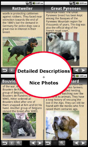 The Complete Dog Directory