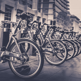Ecofriendly Transport by Madhavan Krishnan - Transportation Bicycles ( cycle, bike, melbourne, transport, urbanscape, outdoor, australia, travel, bicycle, canon 5d, black&white )