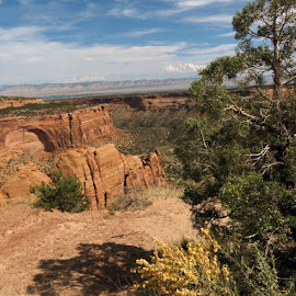 Colorado National Monument  by Casey Nugent - Novices Only Landscapes