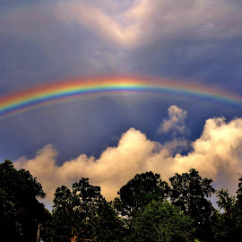 Over the rainbow by Danielle Bodkin - Landscapes Cloud Formations