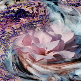 FLOWER'S DANCE by Carmen Velcic - Digital Art Abstract ( abstract, purple, roses, pink, flowers, digital )