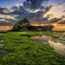 Low tide road by Karl Nakasone - Landscapes Sunsets & Sunrises ( japan, reef, sea, low tide, ocean, okinawa, island )