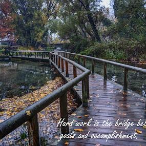Bridge by Stratos Lales - Typography Quotes & Sentences ( work, water, park, trees, bridge )