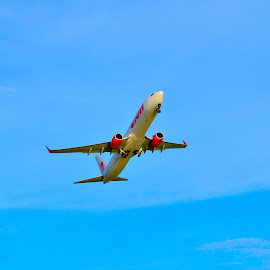 Just Airbone by Eryusya R - Transportation Airplanes ( holiday, sky, vacation, indonesia, airplane, aircraft,  )