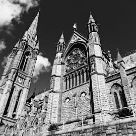 St. Colman's Cathedral by Deborah Russenberger - Buildings & Architecture Places of Worship ( b&w, church, cathedral )