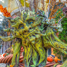 Tree Monster by Barry Stead - City,  Street & Park  Markets & Shops