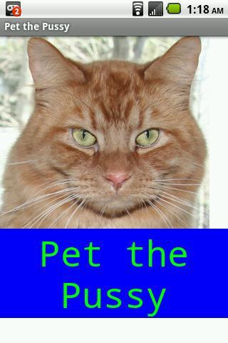 Hello Pussy Cat