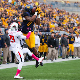 WVU Football by Craig Gunter - Sports & Fitness American and Canadian football