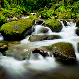river 2 by Hitsugaya Syaiful - Landscapes Waterscapes