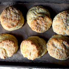 My Favorite Buttermilk Biscuits