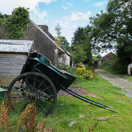 I'm not in the mood by F Kelly - Landscapes Travel ( pony & trap, ireland, co.kerry, tourists, horse, gap of dunloe, jarvey )