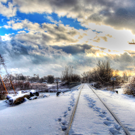 by Dipali S - Landscapes Travel ( snowfall, countryside, wood, frost, driving, road, travel, gravel, landscape, frozen, usa, photography, tranquil, sky, nature, cold, tree, ice, january, snow, empty, weather, light, branches, absence, white, christmas, snowy, forest, tracks, railway track, rural, country, michigan, winter, season, horizontal, outdoors, background, outdoor, cloud, scene, day )