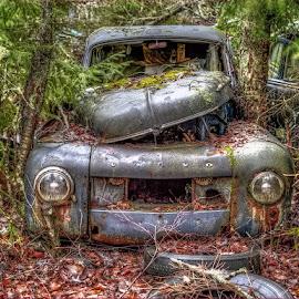 VOLVO by John Aavitsland - Transportation Automobiles