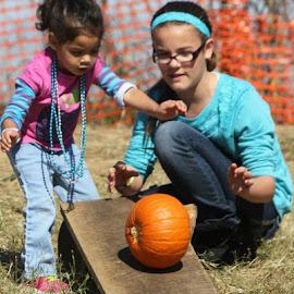 The Great Pumpkin  Roll by Scott Miller - People Family