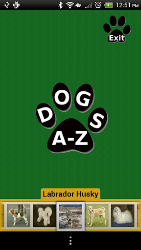 Dogs A-Z