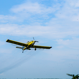 Dusty by Brian Box - Transportation Airplanes ( arkansas photographer, airplane, aircraft, air tractor, crop duster, farming )