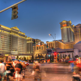 Caesar's Palace by Tracy Stephensen - Buildings & Architecture Office Buildings & Hotels