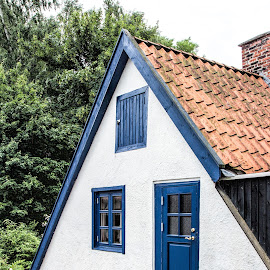 door and windows by Vibeke Friis - Buildings & Architecture Homes ( triangle, window, door,  )