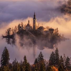 Church on the Island in Mist Sunrise by Aleš Krivec - Buildings & Architecture Places of Worship ( water, church, beautiful, white, lake, reflecting, island, foggy, mountains, winter, tree, window, slovenia, bled, castle, misty, religious, mist )
